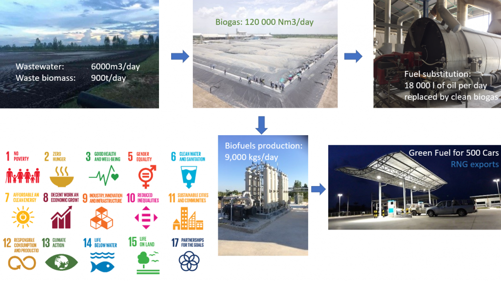 Process flow of biogas project